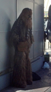 Drop a tip in the can and get your pic taken with Chewy.