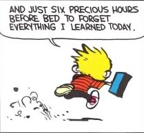 Calvin (6 precious hours strip)