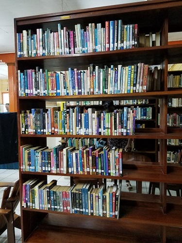 ya-bookcase-in-belize-library